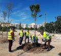 Vecinos de Palma siembran árboles en el bosque urbano del canódromo