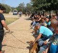 IX desfile perros en adopción Peluditos de Son Reus