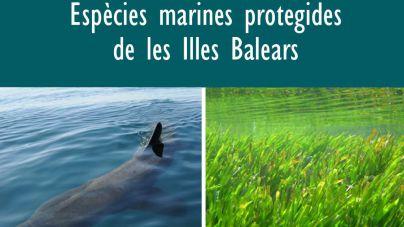 El Govern edita una guía sobre especies marinas protegidas de Balears