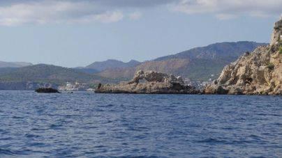 La UE apoya proteger el corredor de migración de cetáceos del Mediterráneo