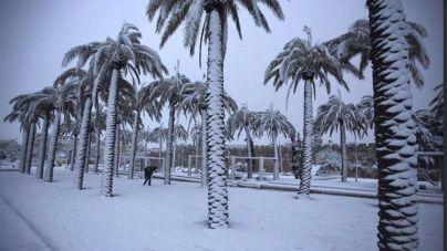 Arabia Saudí registra la primera nevada en 85 años