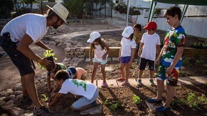 Curso de introducción a la agricultura para niños