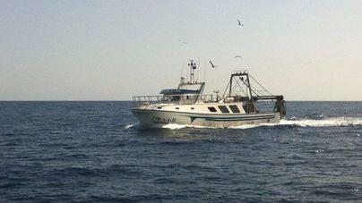 Los puertos de Balears recibieron un 23,5% menos de pesca en 2015