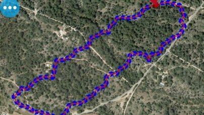 Extinguido el incendio forestal de Cala Saona iniciado el miércoles