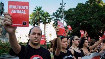 Sóller ya es municipio antitaurino