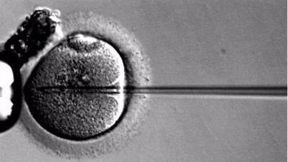 La fecundación 'in vitro' podrían aumentar el riesgo de cáncer en los bebés