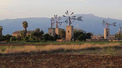 Los molinos han formado parte de la estampa del Pla de Sant Jordi