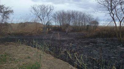 Suspendidos los permisos de quema agrícola controlada de la Conselleria