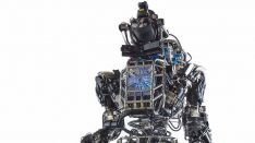 En 30 a�os los robots podr�an reemplazar a los humanos