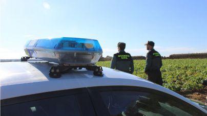 Cuatro detenidos por robos en fincas agrícolas y naves de la Part Forana