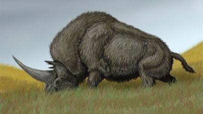 El último unicornio siberiano murió hace sólo 29.000 años