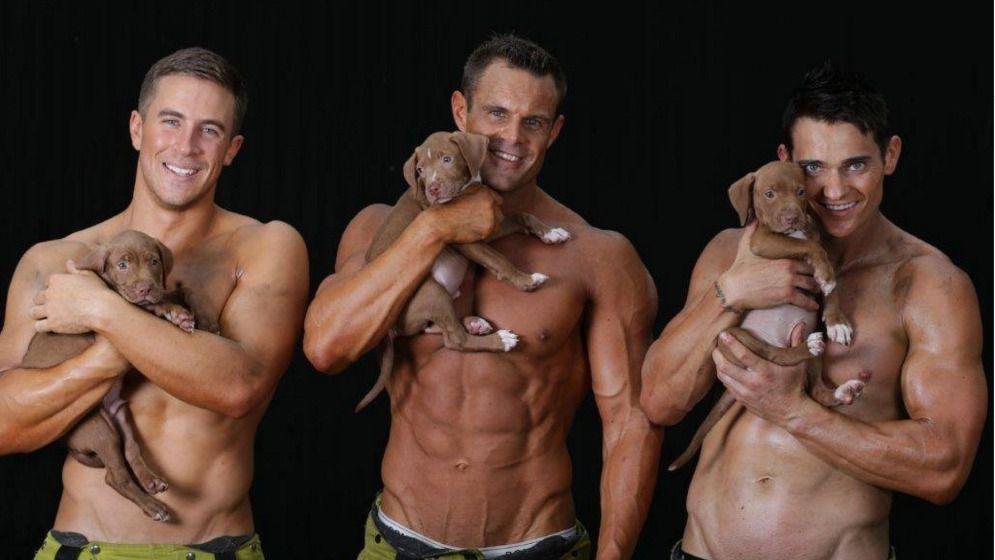 Los bomberos australianos se lucen con cachorros para recaudar fondos