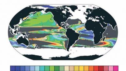 Los océanos se asfixian