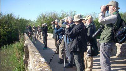 S'Albufera se abre paso en la primera línea del turismo ornitológico