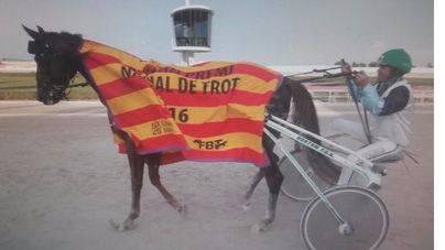 Antoni Frontera gana el Gran Premi Nacional de Trot con Duna de Llevant en Son Pardo
