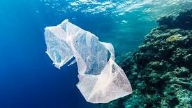 Varios grupos ecologistas piden al Govern que prohiba las bolsas de plástico desechables