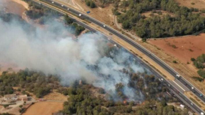 Controlado el incendio forestal declarado a pocos metros de la autopista de Llucmajor