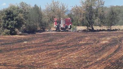 Un incendio agrícola causa alarma en Costitx por su cercanía a viviendas