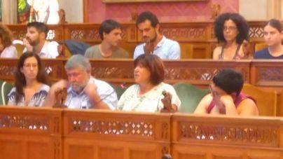 Carme Palomino durante su intervenci�n en el Pleno