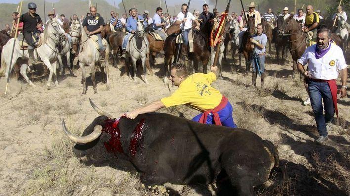 El 'Toro de la Peña' sustituirá al 'Toro de la Vega'