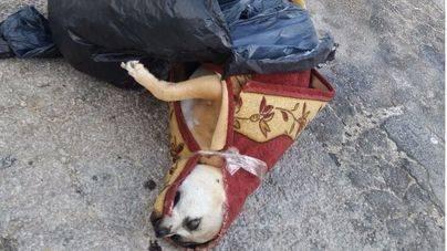 Abandonado el cadáver de un perro envuelto en una alfombra en Son Malferit