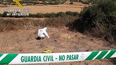 Imputado por ahorcar dos perros en Menorca