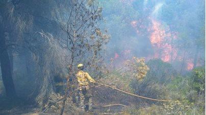 Un segundo foco reaviva el incendio en Sa Canova