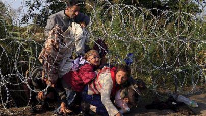 Un eurodiputado propone cabezas de cerdo para disuadir a los inmigrantes