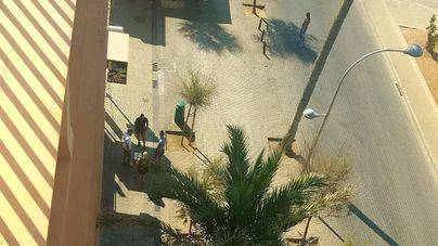Vecinos de Platja de Palma señalan que el trile cuenta con puntos fijos