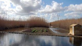 Unió de Pagesos denuncia que el Govern les ha apartado de las decisiones sobre la 'ecotasa'