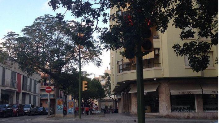 Quejas por un semáforo tapado en Palma