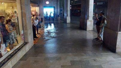 Cort restringe el tráfico en la zona de Jaime III para resolver pluviales
