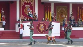 La lluvia desluce el desfile de Madrid