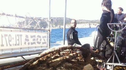 Calvià recoge más de 1.000 kilos de residuos de su fondo marino