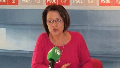 Dirigentes del PSOE creen que Hernanz debe dejar la dirección del Grupo por su indisciplina
