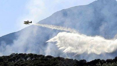 Los incendios forestales de este año han quemado 213 hectáreas