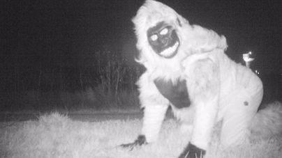 La Policía pone cámaras para localizar un puma y graba bromas de vecinos