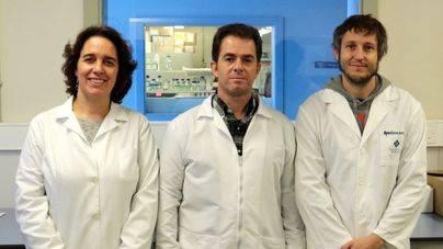 La UIB descubre una molécula antitumores