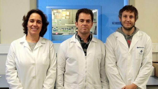 El equipo de investigadores del grupo de Biologia Cel·lular del Càncer de la UIB