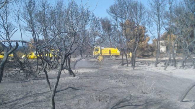 Los bomberos de Mallorca intervinieron en un 35% más de incidencias que en 2015