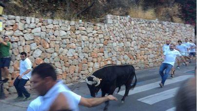 Se basan en una sentencia del TSJ de Castilla y León sobre el toro de Astudillo