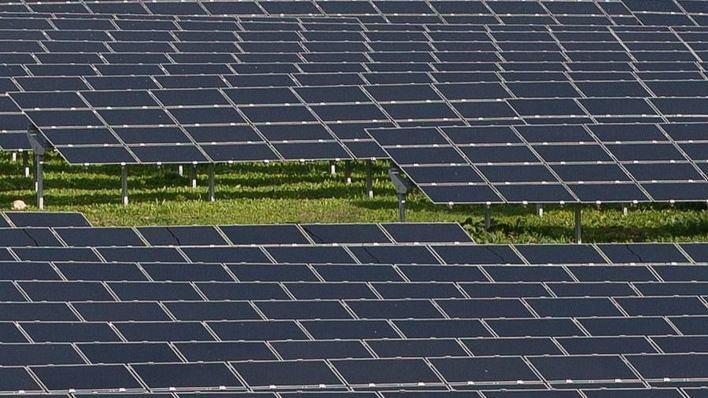 El GOB se opone a un proyecto de planta fotovoltaica en Llucmajor
