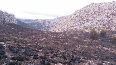 La virulencia del viento y la orografía del terreno dificultaron las tareas de extinción