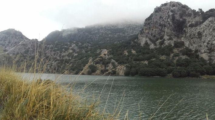 Palma ha convocado un bolsín extraordinario de técnicos de Medio Ambiente