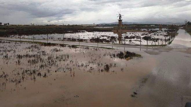 Unió de Pagesos califica de tomadura de pelo que Balears no reciba ayudas por el temporal