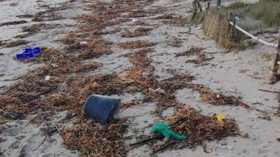 Muro exige al Govern la limpieza de la basura de su playa