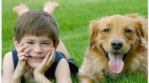 Los niños hasta siete años mejoran su inteligencia si tienen mascota en casa