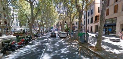 Círculo Balear critica que el Govern no condene la agresión sufrida por un militar en Palma