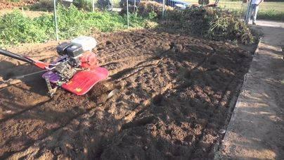 Un hombre que trabajaba con un motocultor en el campo sufre un accidente en Algaida
