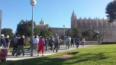 Turistas visitando la Seu